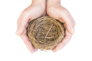 Hands protecting an empty bird's nest